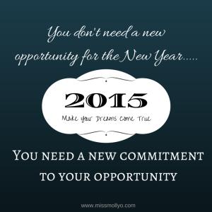 2015 commit